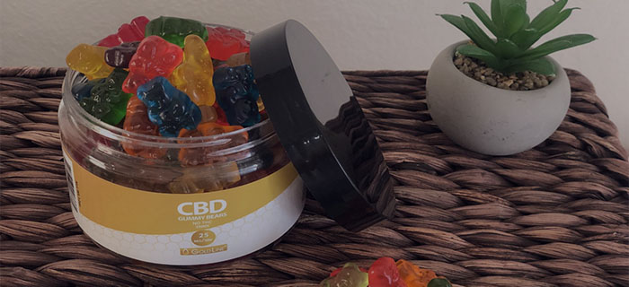 hemp infused gummy